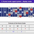 Ckumoi-scale-caged-notes-nr-l